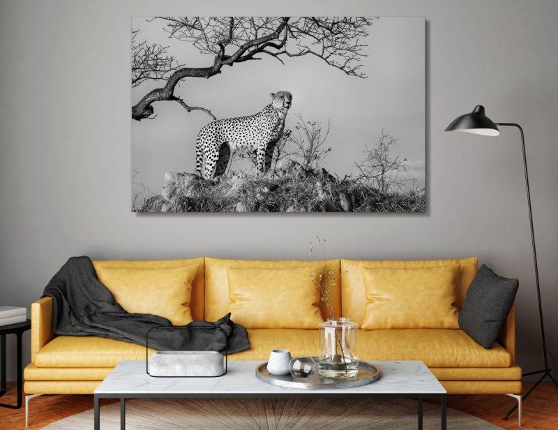 Black & White Cheetah Print | African Nature Canvas Wall Art